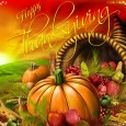 Wishing you a wonderful Thanksgiving! I'm thankful for…you