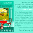 Whew! Finally, after three weeks on the road and much juggling of projects, I'm happy to announce the upcoming release of the first Sadie Kramer Flair Mystery! Release date 5/13....